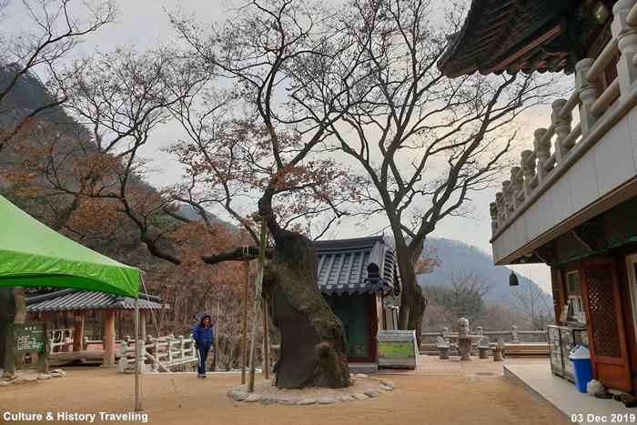 서울 관악산 호압사 06-20191203