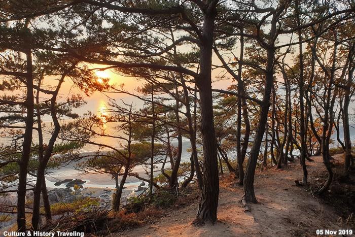 인천 무의도 해상관광탐방로  41-20191105