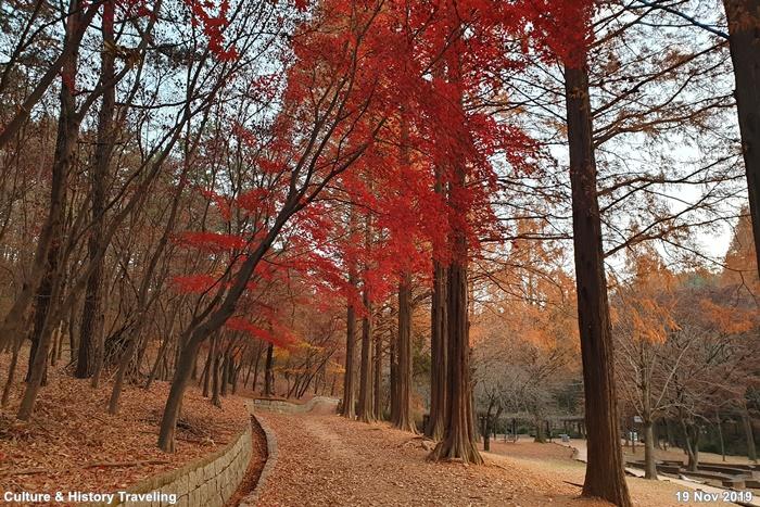 인천 인천대공원 03-20191126