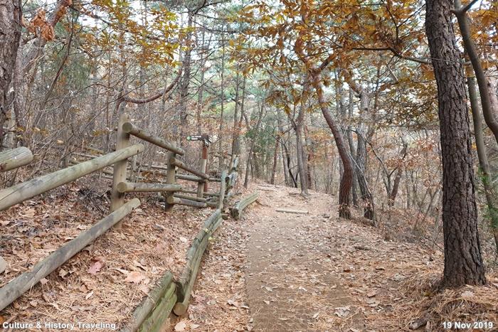 인천 인천대공원 05-20191126