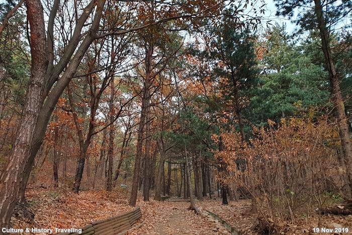 인천 인천대공원 06-20191126