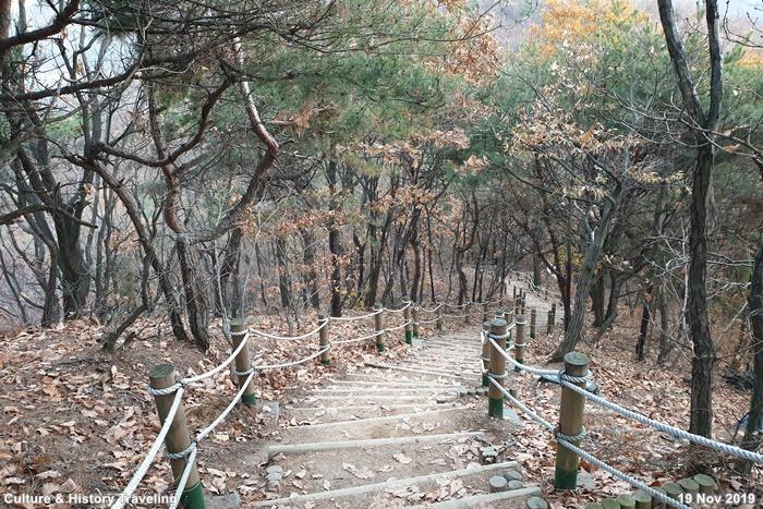 인천 인천대공원 07-20191126